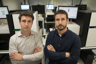Twin brothers Obi Griffith, PhD, and Malachi Griffith, PhD, have created a comprehensive database that matches thousands of disease genes with approved...