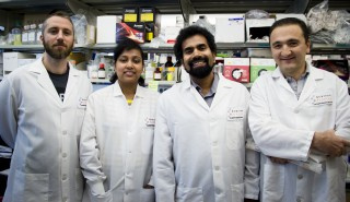 The Scripps Florida team who worked on the new aging research includes (left to right) Valerio Rizzo, Beena Kadakkuzha, Sathya Puthanveettil and Komol...