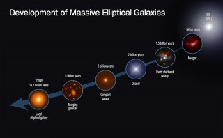 DEVELOPMENT OF MASSIVE ELLIPTICAL GALAXIES.  