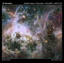 HUBBLE PROBES INTERIOR OF TARANTULA NEBULA.  