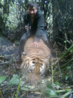 "Newswise: WCS Conservationist Lauds ""Smart"" Protection for Thailand's Tigers & Elephants"