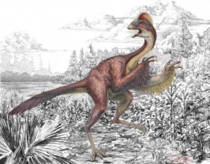 "Anzu wyliei – a bird-like dinosaur nicknamed the ""chicken from hell"" that roamed the Dakotas 66 million years ago – appears in its natural environment..."