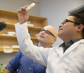 Yehuda Ben-Shahar, PhD, assistant professor of biology, (left) and Xingguo Zheng, a PhD candidate in neuroscience and co-author on the paper, examining...