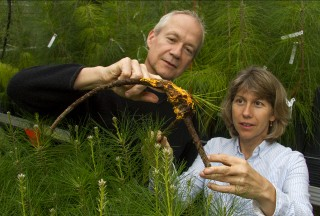 John M. Davis, professor and associate director of the UF School of Forest Resources and Conservation, and Katherine Smith, a biological science technician...
