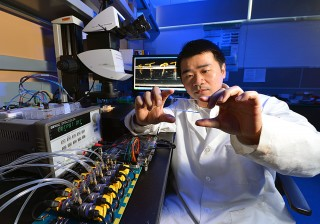 Iowa State's Liang Dong examines a microfluidic seed chip, an essential part of the instrument he's developing to study the effects of genes and environmental...
