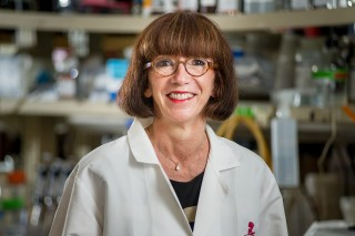 Martine Roussel, Ph.D., a member of the St. Jude Children's Research Hospital Department of Tumor Cell Biology