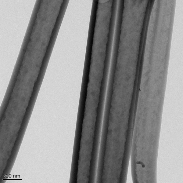 This transmission electron microscope image shows four nanofibers with hollow structure. The thickness of the walls of the tubes ranged from 40 to 80 nanometers, depending on the amount of current applied and the growth time.