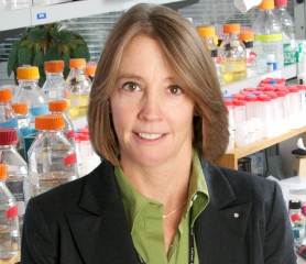 Gene therapy scientist Beverly L. Davidson, Ph.D., joined The Children's Hospital of Philadelphia on April 1, 2014.
