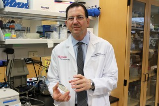 Rutgers infectious disease expert David Perlin leads a team that will use an NIH grant of up to $26 million to seek new ways to combat deadly bacterial...