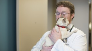 Dr. John Sessions is with his patient Tipper, one of the 2014 ACVIM Animal Survivor stories.