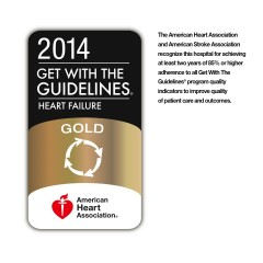 Mount Sinai Beth Israel receives the 2014 American Heart Association's Get With The Guidelines®–Heart Failure Gold Quality Achievement Award.
