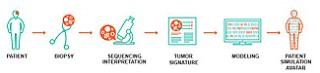 Graphic depicts progression of personalized medicine from biopsy to cancer avatar.
