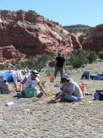 Newswise: Archaeologists Use Drone Images to Uncover Ancient New Mexico Village