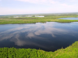 Ontario's Far North contains the world's most intact wetland and peatland complexes.