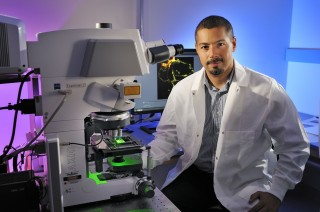Gregorio Valdez and his team designed a search engine – called EvoCor – that identifies genes that are functionally linked.