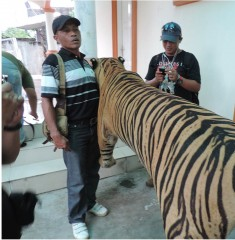 Police in Indonesia's Aceh Province have confiscated a number of illegally held live animals and wildlife parts from the homes of suspected wildlife...