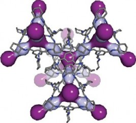 In this computer simulation, light and dark purple highlight the cavities within the 3D pore structure of CC3.