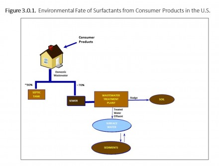 Newswise: 50-Year Review of Key Detergent Ingredient Use Shows No Adverse Environmental Impacts