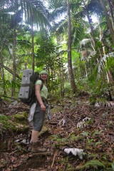 Michigan Tech graduate student Alida Mau in Puerto Rico's El Yunque National Forest