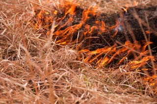 Burning in the Flint Hills is typically concentrated in late April. The time frame stems from research conducted more than 40 years ago.