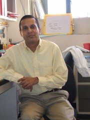 Devanand Sarkar, M.B.B.S., Ph.D., led a team of scientists who demonstrated that a protein known as AEG-1 blocks the effects of retinoic acid in leukemia...