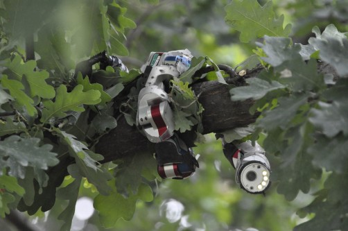Newswise: Snakes and Snake-like Robots Show How Sidewinders Conquer Sandy Slopes