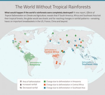 Newswise: Peer-Reviewed Report: Clearing Tropical Rainforests Distorts Earth's Wind and Water Systems, Packs Climate Wallop Beyond Carbon