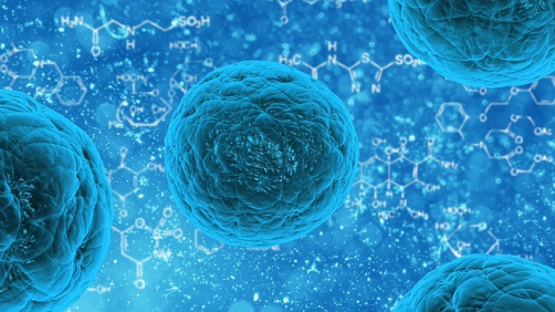 Newswise: New Study Sheds Light on Cancer Stem Cell Regulation