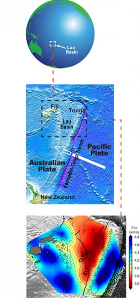 The Lau Basin, in the South Pacific (top), is a V-shaped basin created by the subduction of the Pacific Plate at the Tonga Trench (the purple  line in the central image). A seismic image (bottom) of part of the basin at a depth of 50 kilometers (31 miles) shows magma pooling to the north beneath areas that are unrifted (dark red) and provide no egress but little magma (pale yellow) along the southern end of the Eastern Lau Spreading Center, or ELSC, even though this area is intensely volcanic.