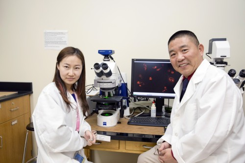 Newswise: New Imaging Tool Targets Degenerative Diseases