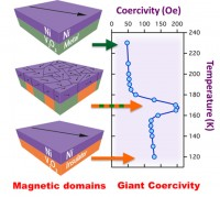 Giant Magnetic Effects Induced in Hybrid Materials