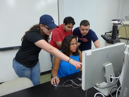 Newswise: Tapping the Potential of Undergraduate Researchers