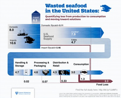 Newswise: Nearly Half of U.S. Seafood Supply Is Wasted