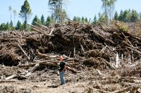 A forester provides context for the size of slash piles, which contain forest residues. Part of the Waste to Wisdom project is looking at ways to process...