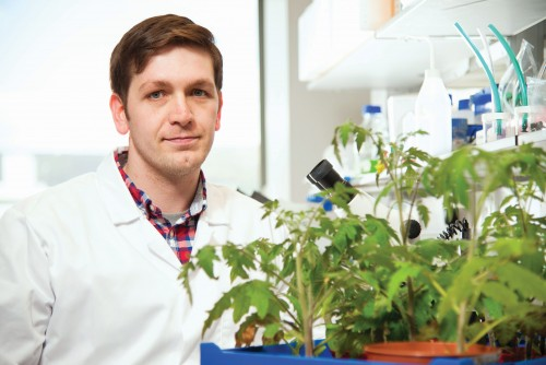 Newswise: Queen's University Belfast Research Could Revolutionise Farming in Developing World