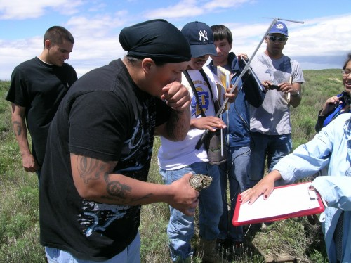 Newswise: How Native American Students View Engineering