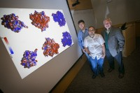 Kenneth Dill, right, and co-authors Adam de Graff, left, and Michael Hazoglou, center, standing beside a computerized display of three identified <a href='/news/tags/-Proteins'>proteins</a>...