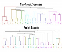 This chart groups letters based on how similar they looked to test participants who didn't know Arabic and to test participants who were experts in the language. Johns Hopkins researchers found the two groups saw the letters quite differently.
