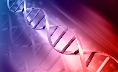 /images/uploads/2016/03/16/DNA_2.jpg