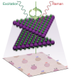 ORNL Researchers Stack the Odds for Novel Optoelectronic 2D Materials