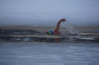Newswise: Move Over, Polar Bear Plunge: Ice Swimming Is Next Big Extreme Winter Water Sport