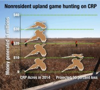 Newswise: Study Determines Economic Impact, Ripple Effect of Hunting on CRP-Funded Land