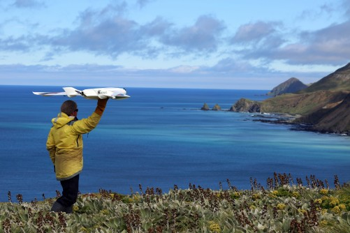Newswise: Call to Minimise Drone Impact on Wildlife