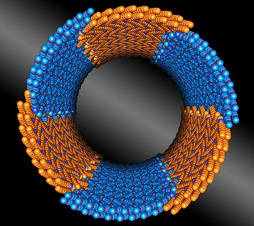 Nature-Inspired Nanotubes