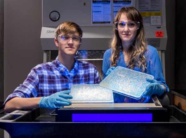 Ryan Randall (R) and Caelan Radford hold up cultures of lab bacteria with mutated proteins fluorescing in various colors.