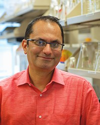 Newswise: Dr. Puneet Opal at Northwestern Memorial Hospital Has Discovered the Genetic Sequencing for Hereditary Ataxias, a Rare Genetic Neurological Disorder