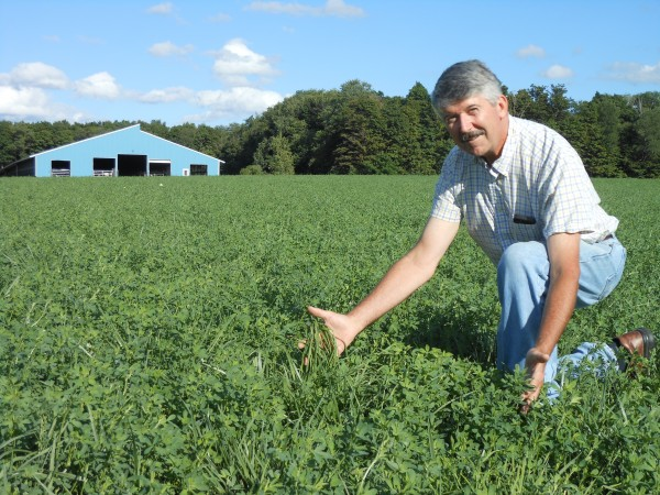 Cornell University researcher Ken Paddock assessing a mixed forage stand on Beck Farms LP in Freeville, NY.