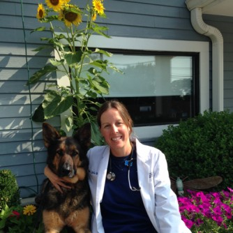 Newswise: Scholar of Pet Safety Offers Air-Travel Tips