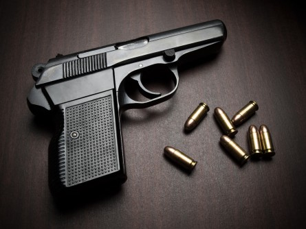 Newswise: One State's Temporary Gun Removal Law Shows Promise in Preventing Suicides