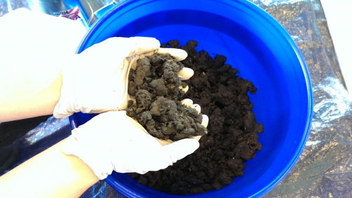 Sludge from Metro Vancouver's wastewater treatment plant has been dewatered prior to conversion to biocrude oil at Pacific Northwest National Laboratory.